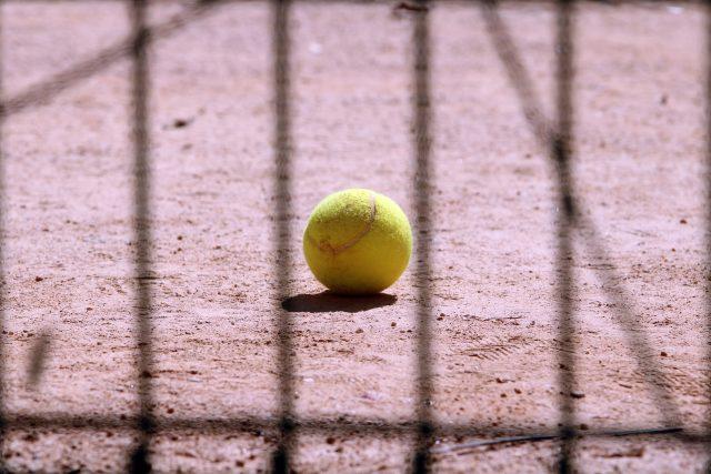 Poslechněte si celý rozhovor s bývalou 16. hráčkou žebříčku WTA Danielou Bedáňovou | foto: Fotobanka Pixabay